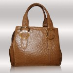 Ostrich leather tote