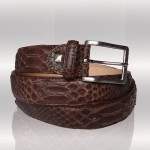 Python brown belt