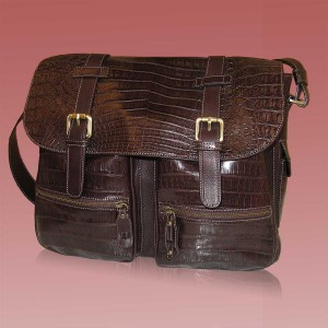 Professional and Travel bags prestigious leather