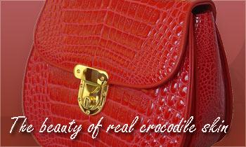 The beauty of real crocodile skin