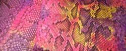 Spring python color